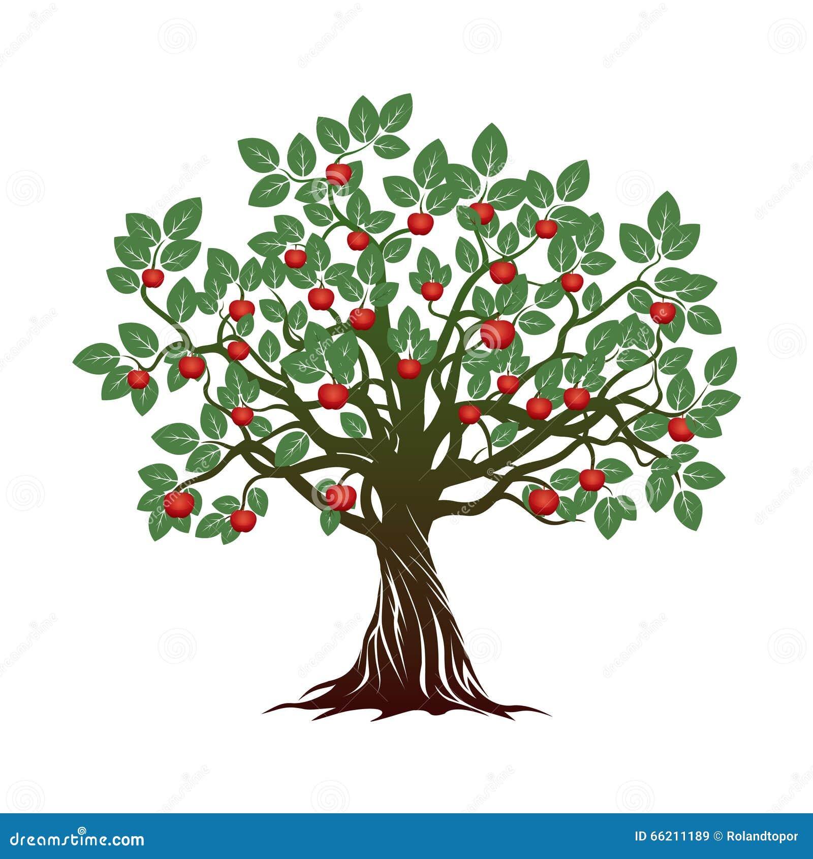 vieil arbre avec les feuilles vertes les racines et les. Black Bedroom Furniture Sets. Home Design Ideas