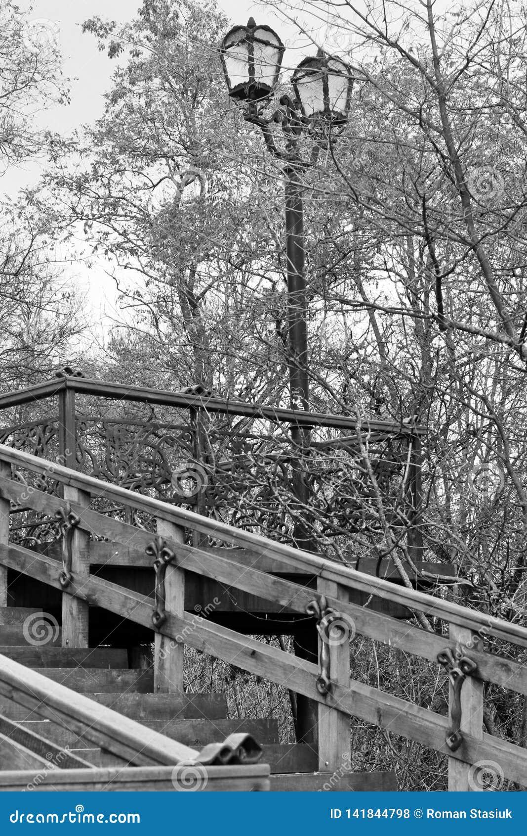 Vieil escalier Vieil escalier en bois avec des ?l?ments de fer travaill? Vieille ?chelle en parc Ville Tchernigov histoire