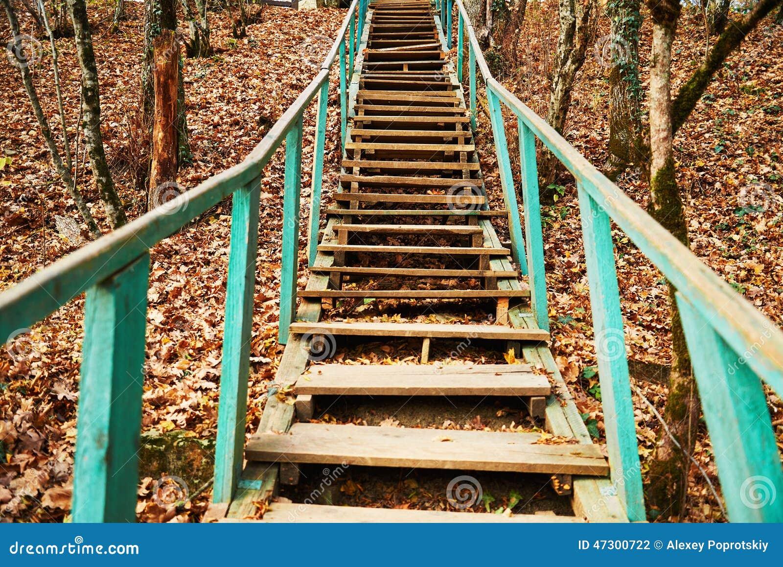 vieil escalier en bois ext rieur photo stock image du escalier nature 47300722. Black Bedroom Furniture Sets. Home Design Ideas