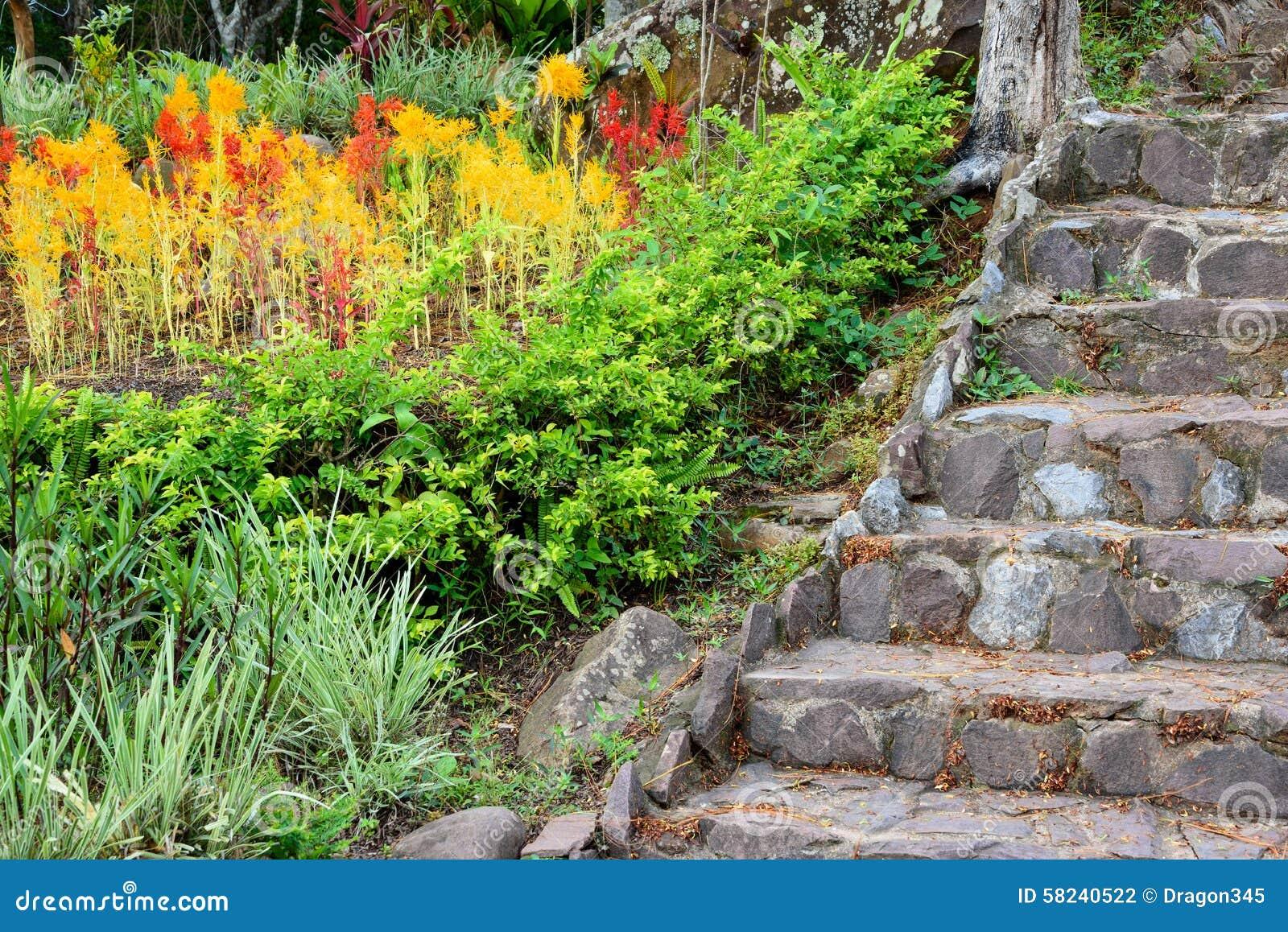 Vieil Escalier En Pierre Dans Le Jardin Coloré Photo stock - Image ...