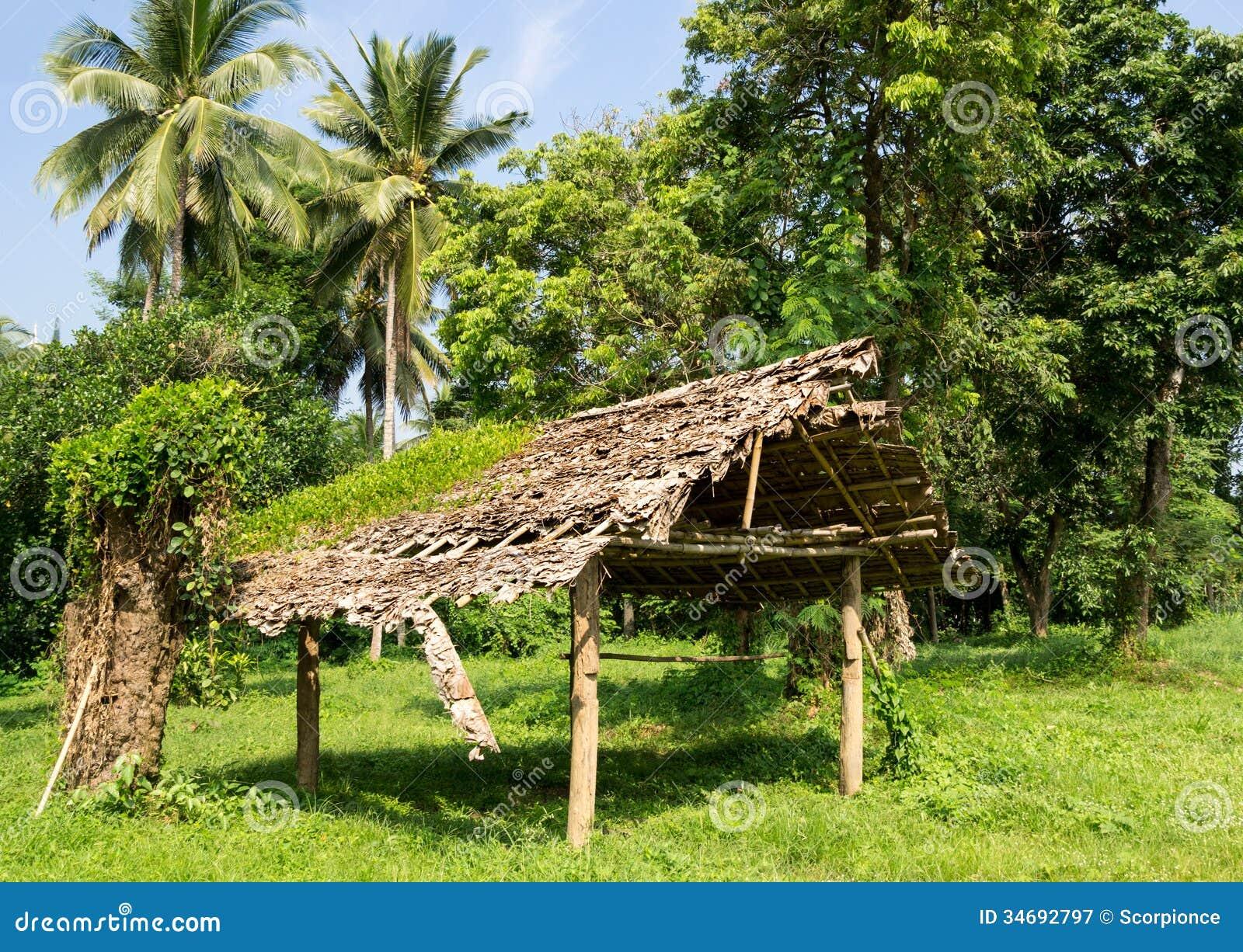 vieille cabane en bois d labr e dans la for t photographie stock libre de droits image 34692797. Black Bedroom Furniture Sets. Home Design Ideas