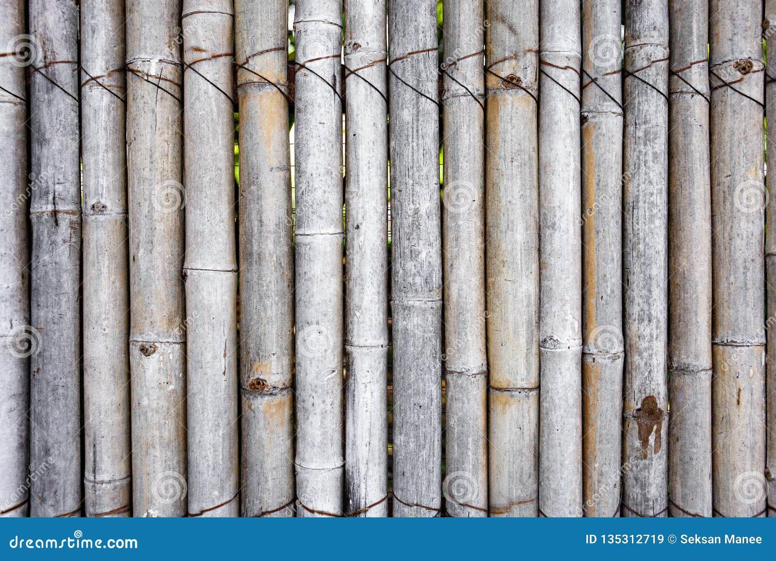 Décorer Un Mur De Jardin vieille clôture en bambou pour le jardin, le mur ou la