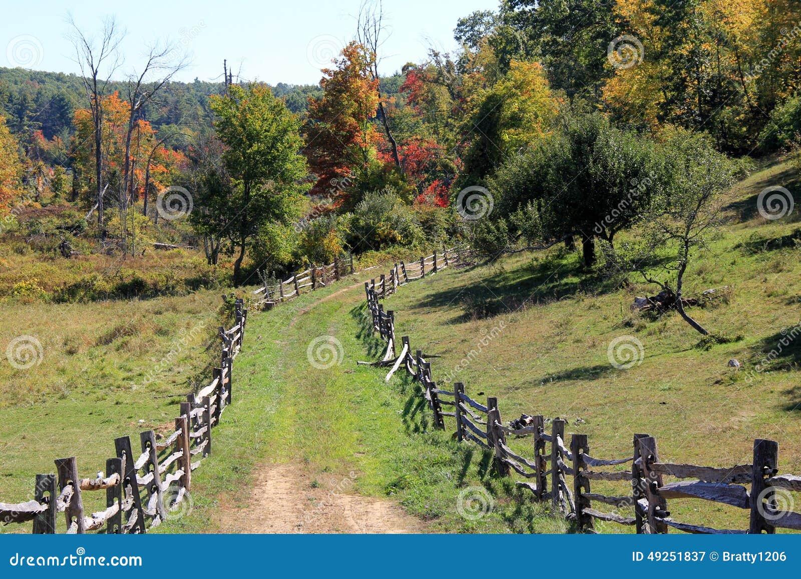 Vieille cl ture rustique rayant une voie herbeuse dans les bois photo stock image 49251837 - Cloture de jardin rustique ...