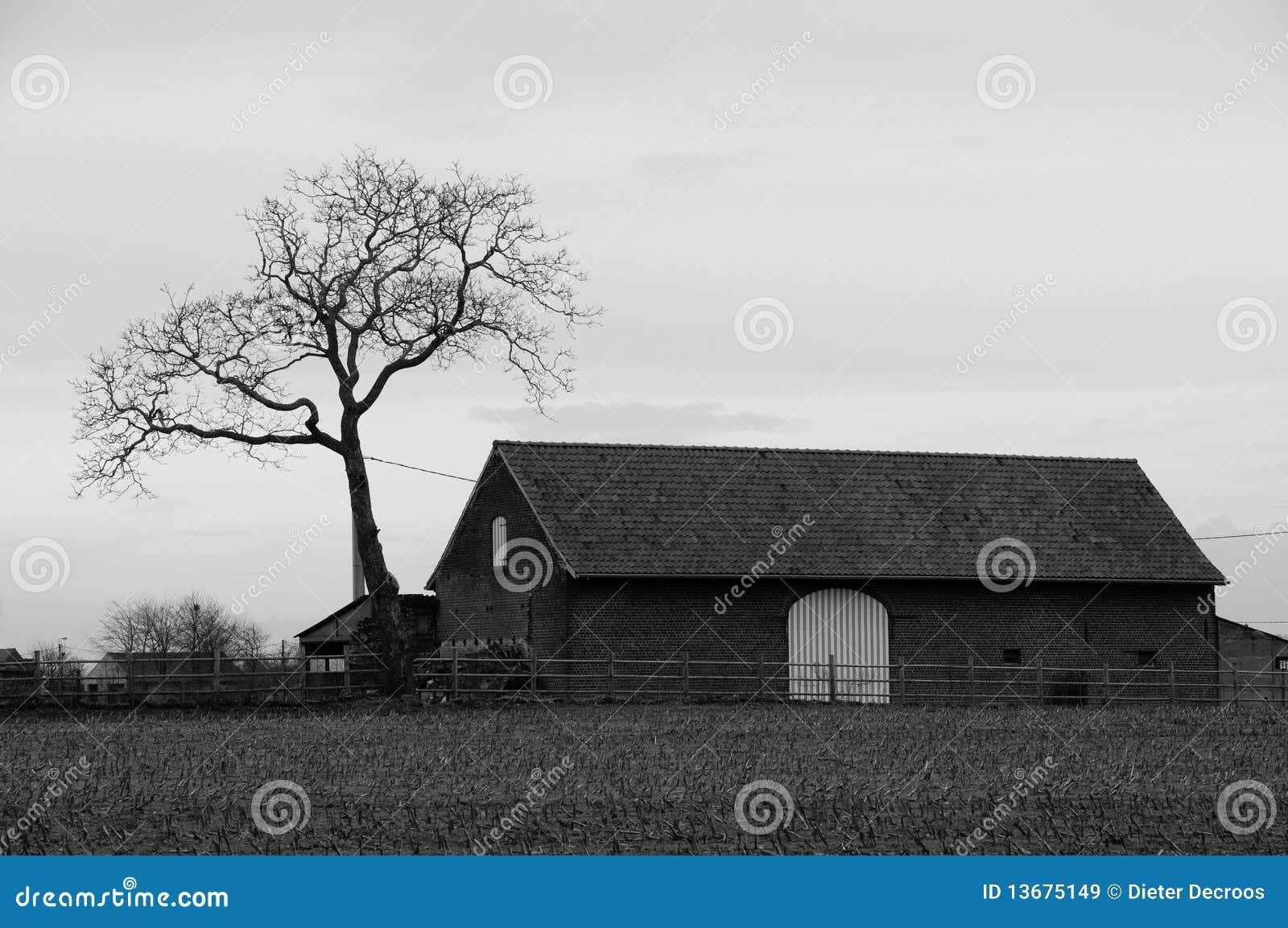 Vieille maison avec l 39 arbre en noir et blanc images libres - Maison en noir et blanc ...