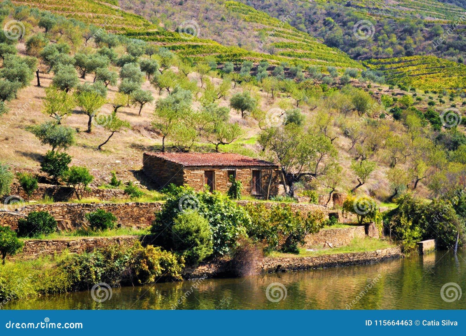 Vieille maison de campagne par la rivière - rivière de Douro