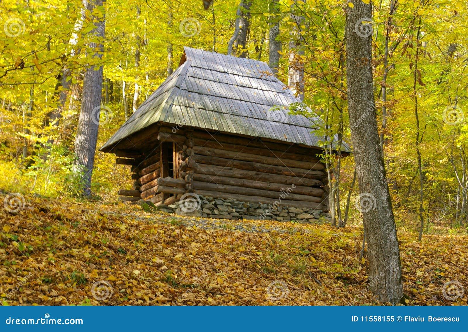 vieille maison en bois au milieu de la for t d 39 or image stock image 11558155. Black Bedroom Furniture Sets. Home Design Ideas