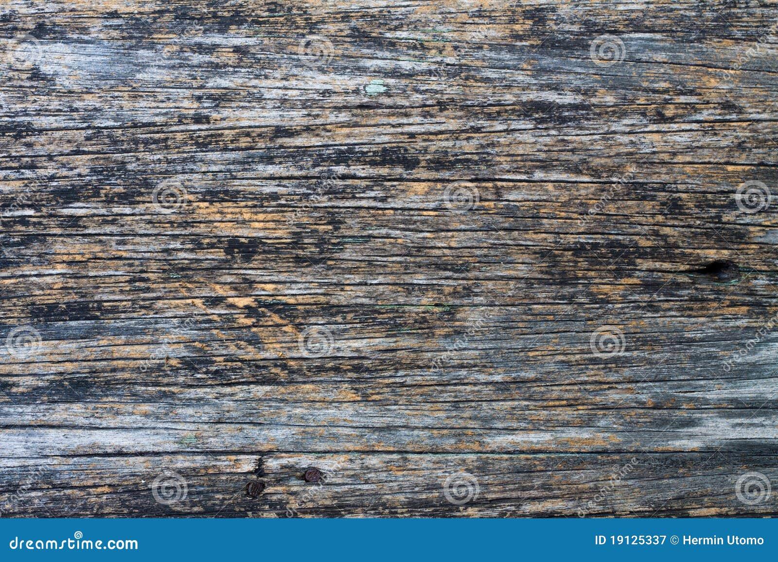 Vieille planche en bois photographie stock libre de droits image 19125337 - Vieille planche bois ...