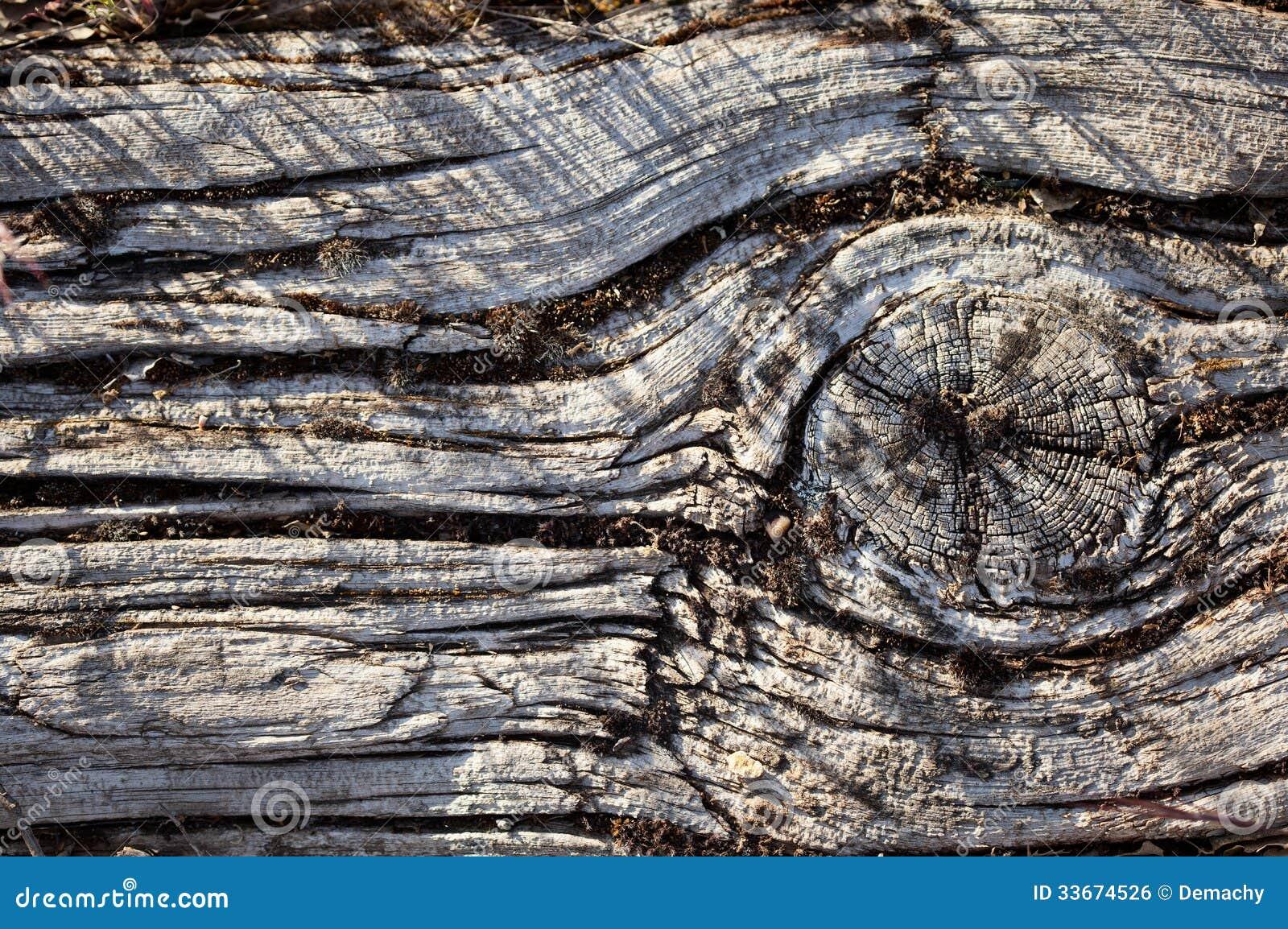 Vieille planche en bois image libre de droits image for Vieille planche de bois