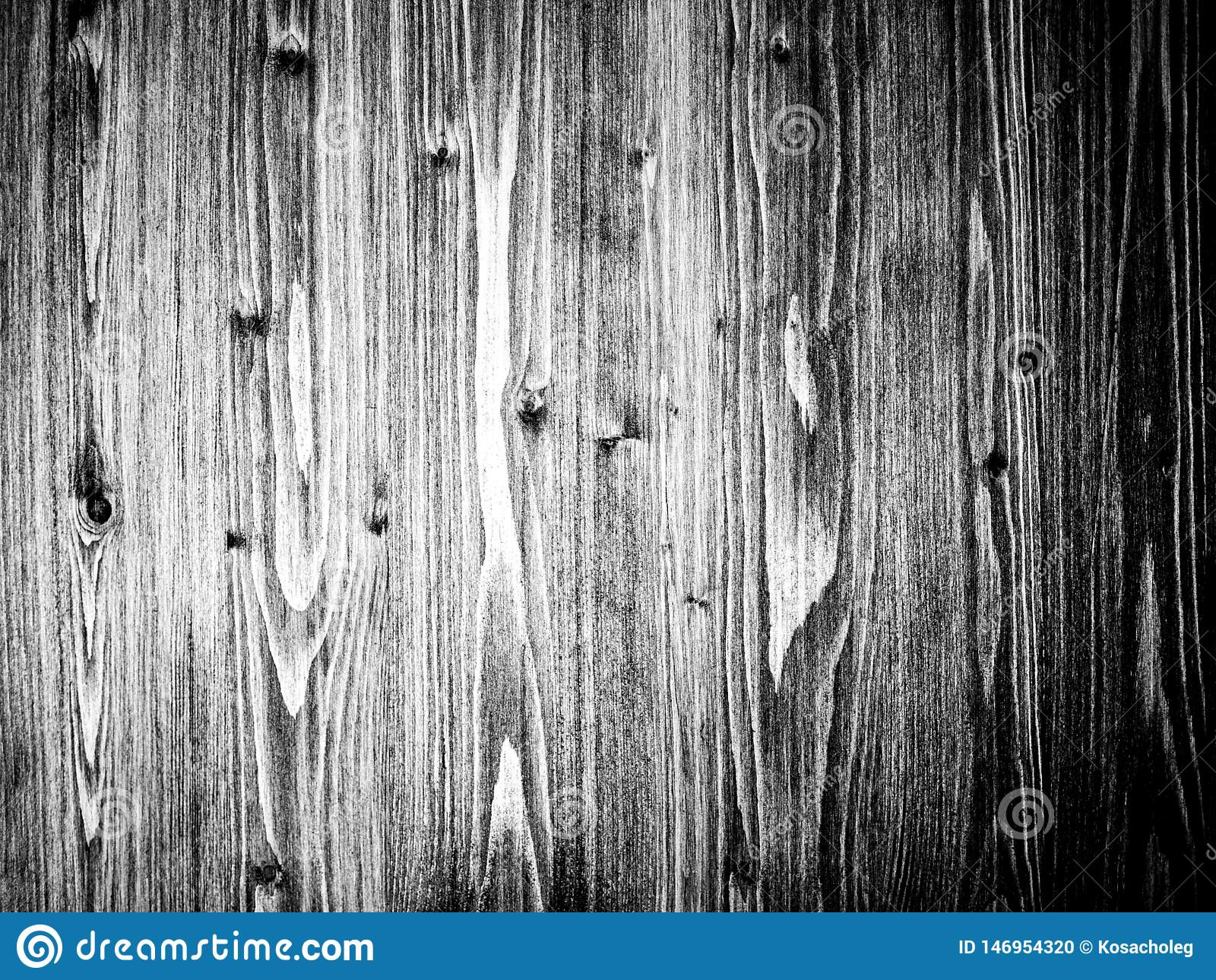 Vieille texture en bois de tron?on d arbre