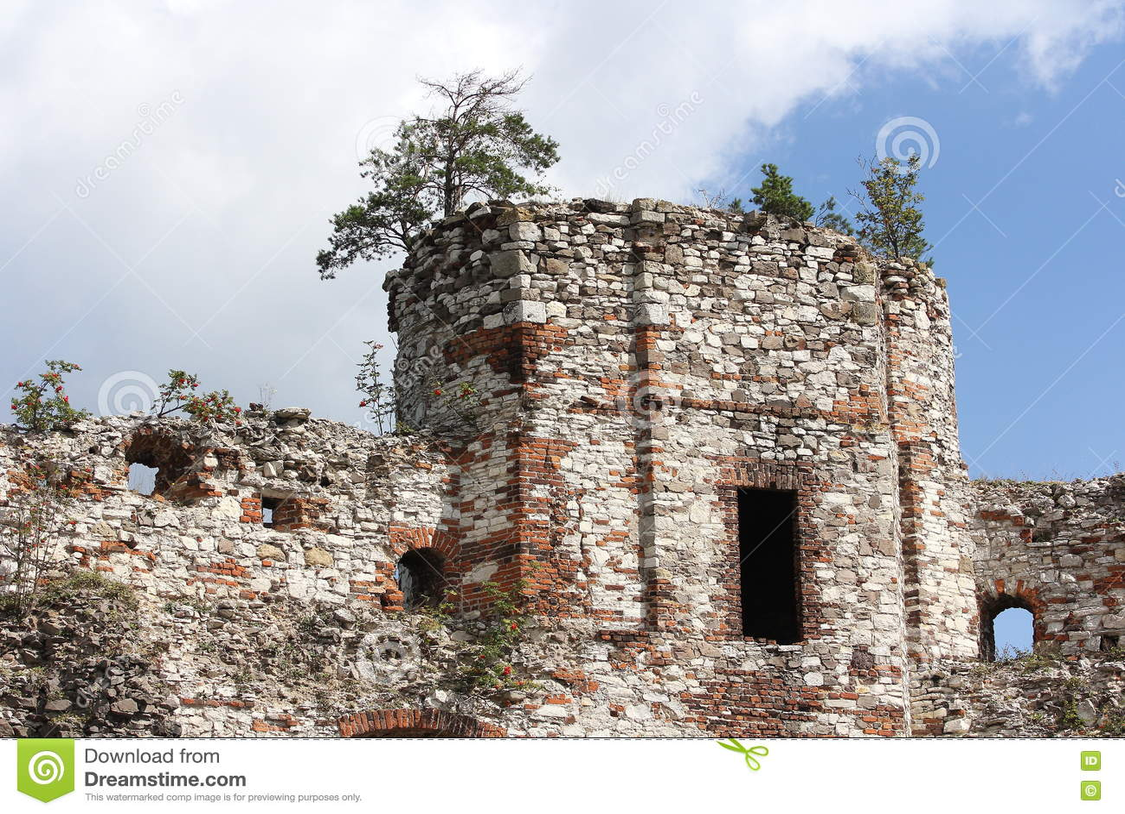 Vieilles ruines polonaises de château