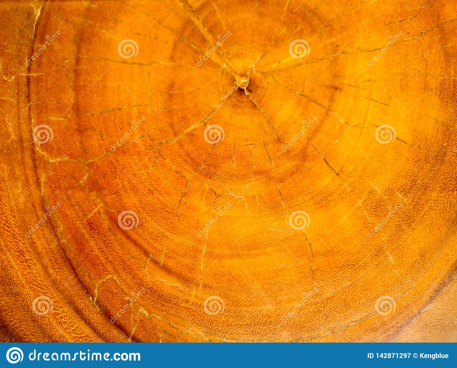 Vieja textura de madera de la naturaleza