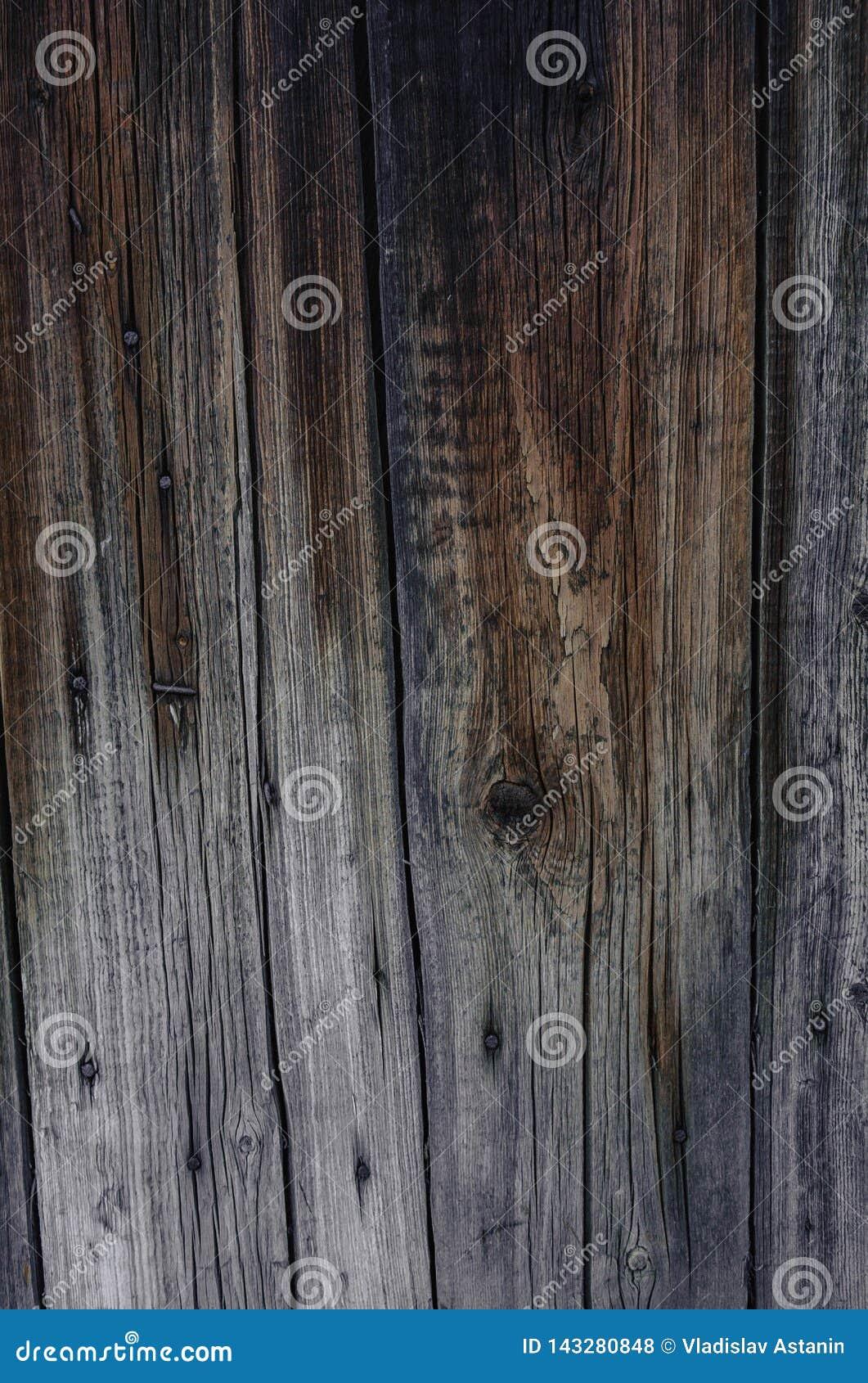 Vieja textura de madera de la pared con los modelos naturales