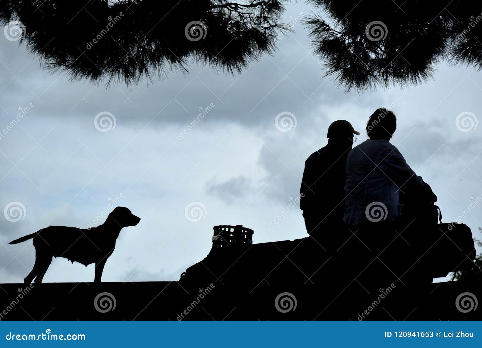 Viejo hombre y mar y perro