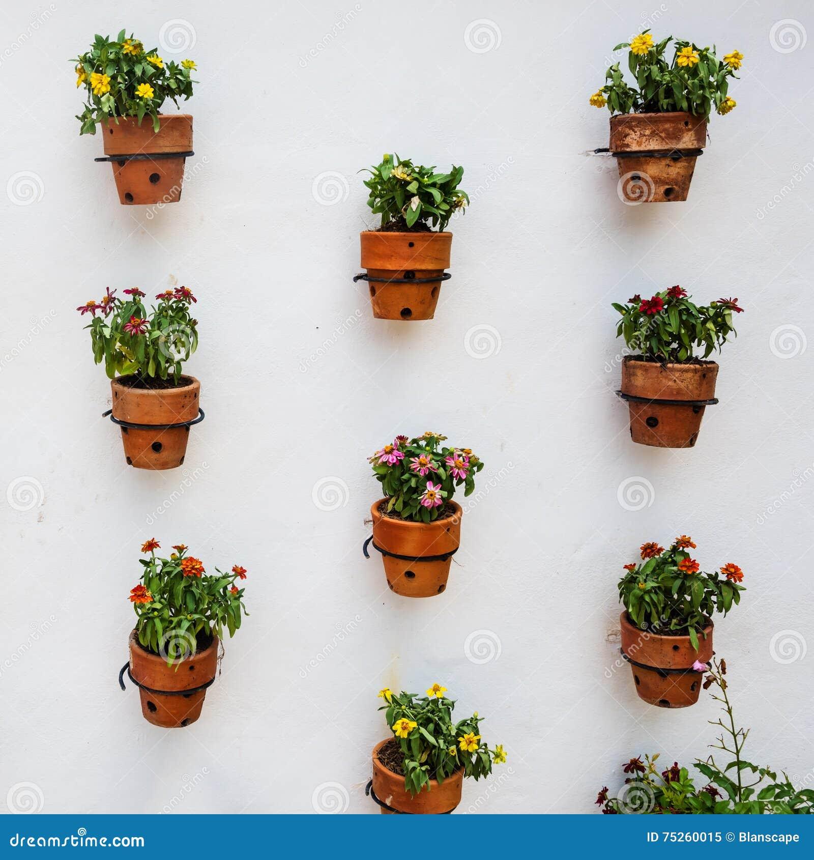 Viele Blumentöpfe Auf Weißer Wand Stockbild - Bild von schönheit ...