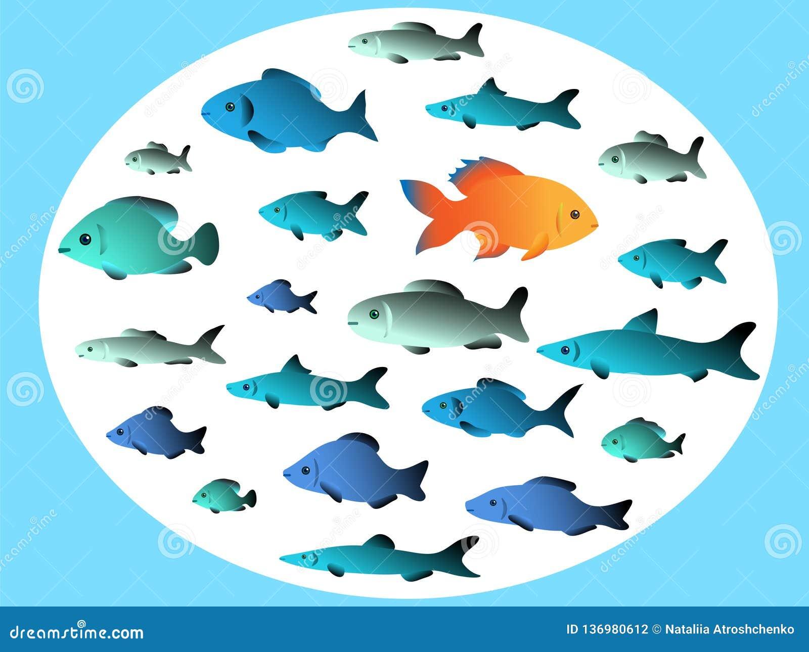 Viele Fische schwimmen in den entgegengesetzten Richtungen