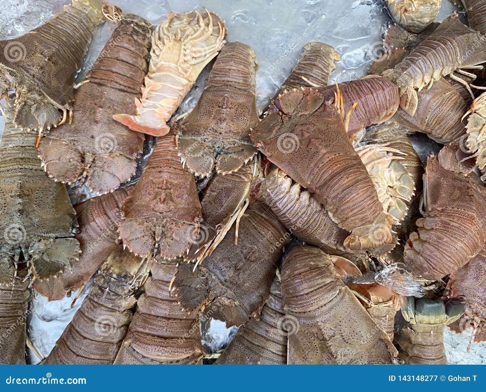 Viele frischen Panzerkrebse werden auf den Eisbehälter in den Markt, Gottesanbeteringarnelen, Stomatopods, Meeresfrüchte gelegt
