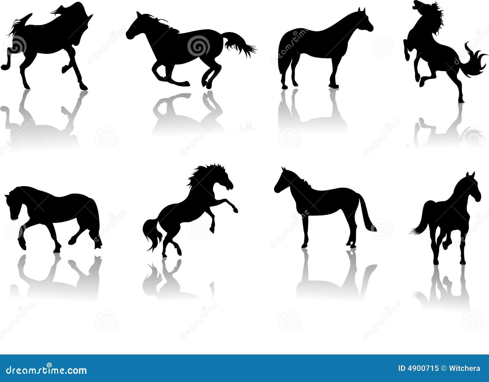 Pferdequiz Kostenlos