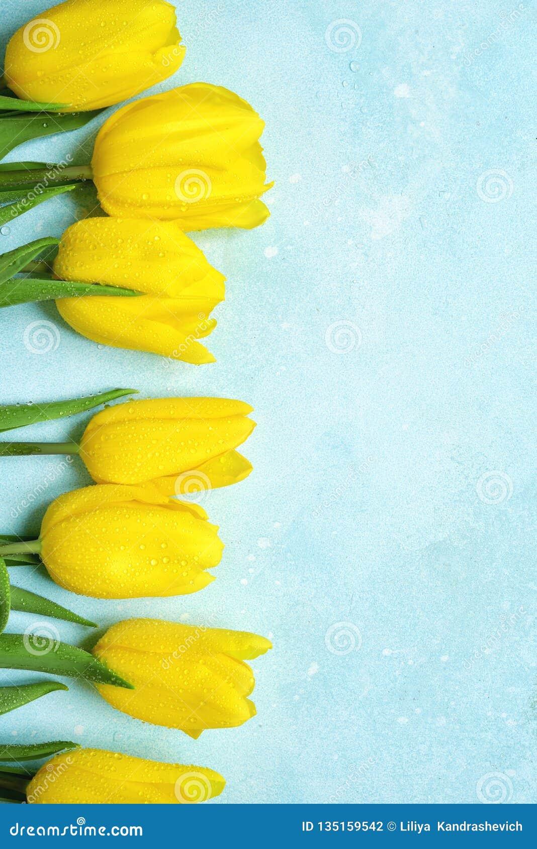Vier achtergrond met boeket van gele tulpen Hoogste mening met exemplaarruimte