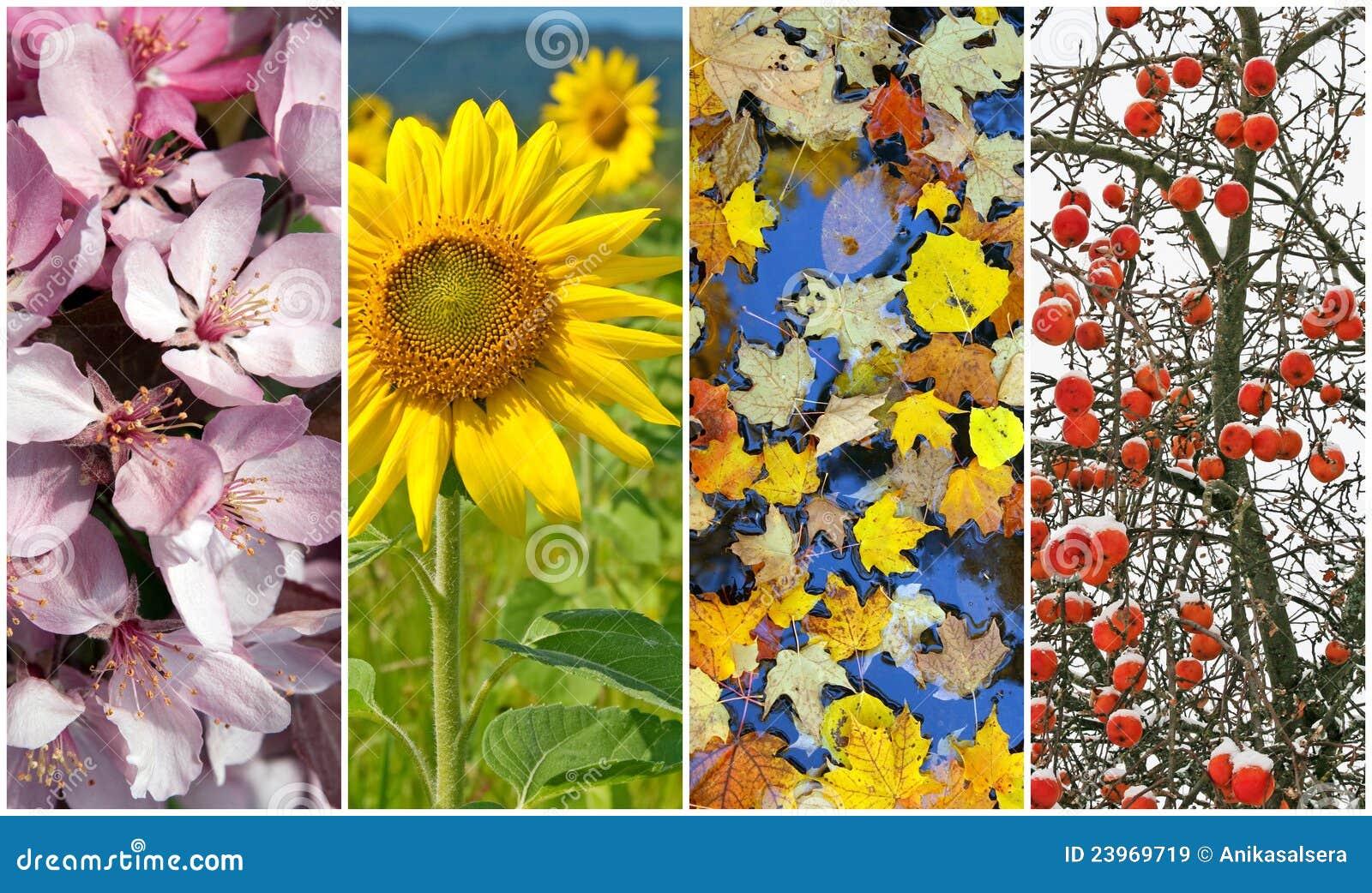 designer fashion ec3cb fd81e Vier Jahreszeiten. Frühling, Sommer, Herbst, Winter ...