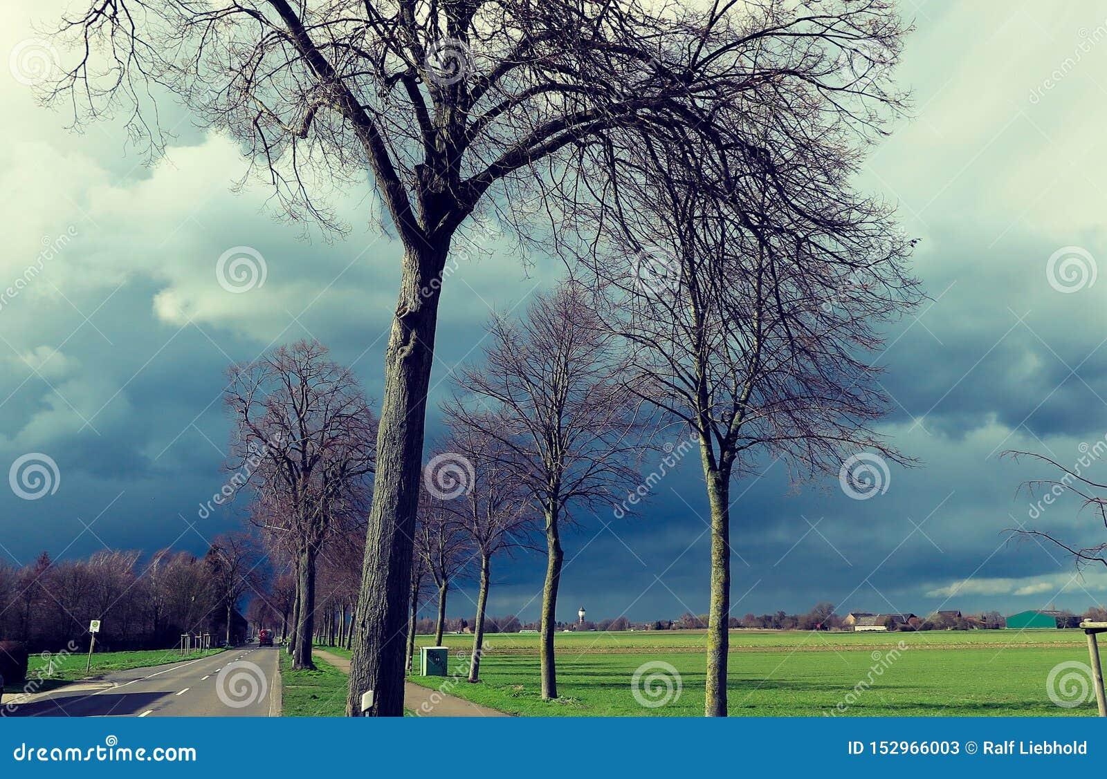 VIERSEN, ALEMANHA - céu escuro com a saraiva que carrega nuvens sobre a estrada secundária e as árvores desencapadas que anunciam