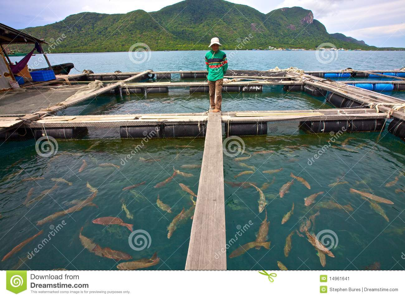 Vietnam Fish Farmer Editorial Photo - Image: 14961641
