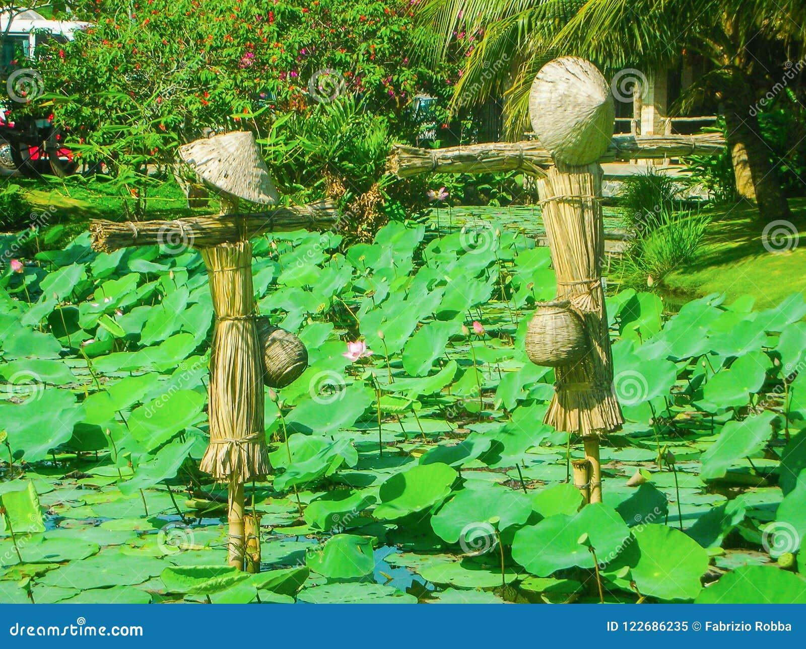 Vietnam scarecrow with lotus flowers vietnam stock image image of vietnam scarecrow with lotus flowers vietnam izmirmasajfo