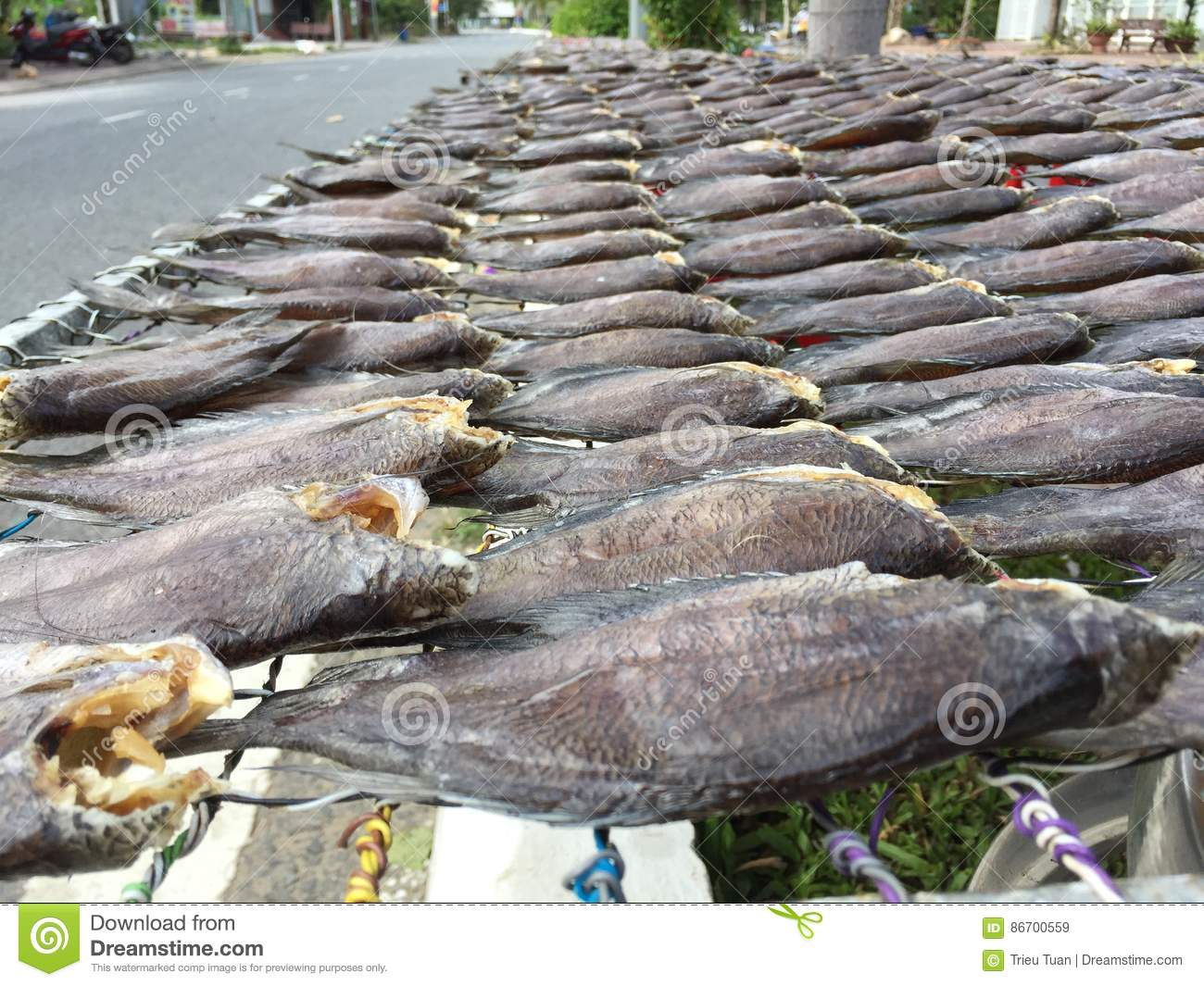 The Vietnamese cuisine: seafood - dried fish