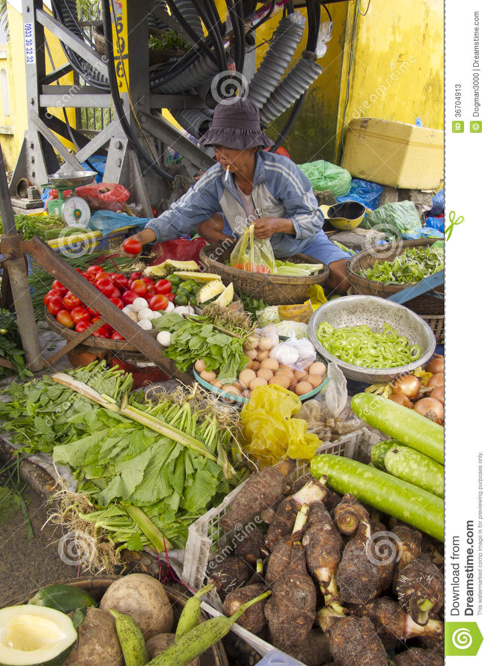 Vietnamese Fruit And Vegetable Seller Editorial Stock Photo