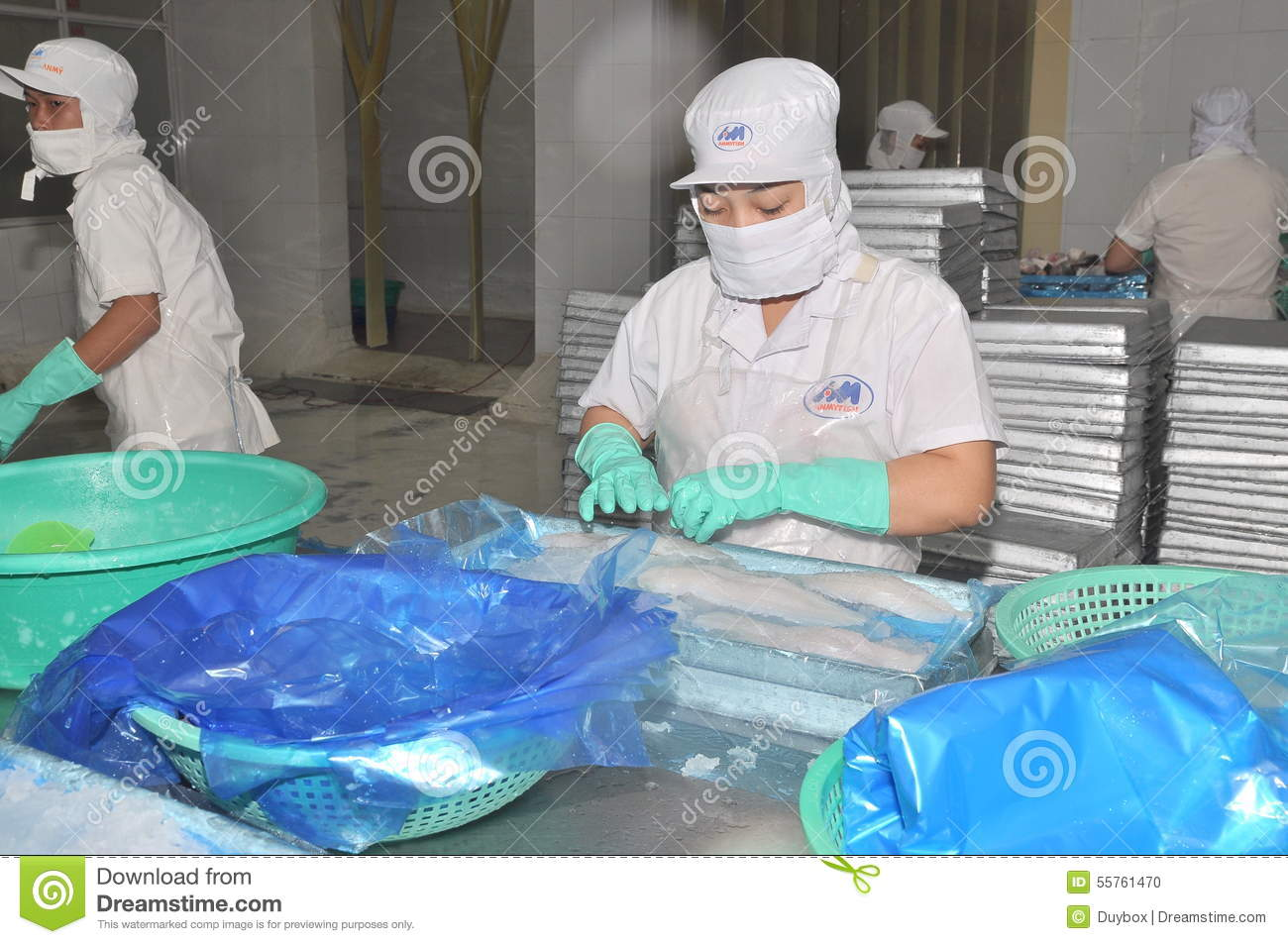 Vietnamese Workers Are Sorting Pangasius Fish After ...