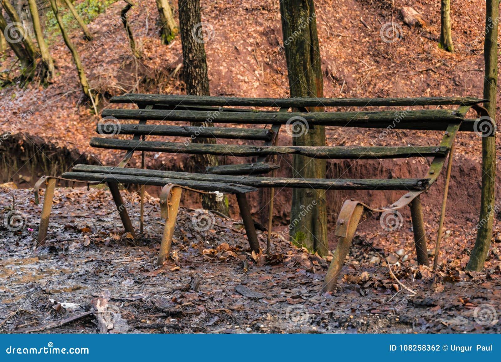 Vieux banc abandonné dans la forêt
