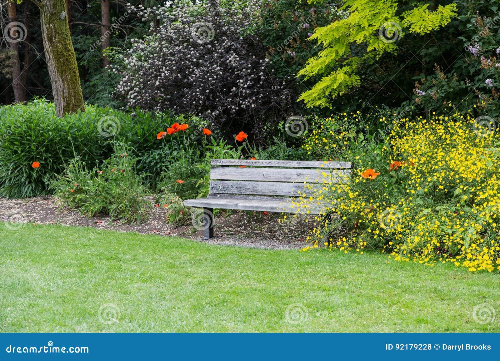 Vieux Banc De Jardin vieux banc en bois dans un jardin public photo stock - image