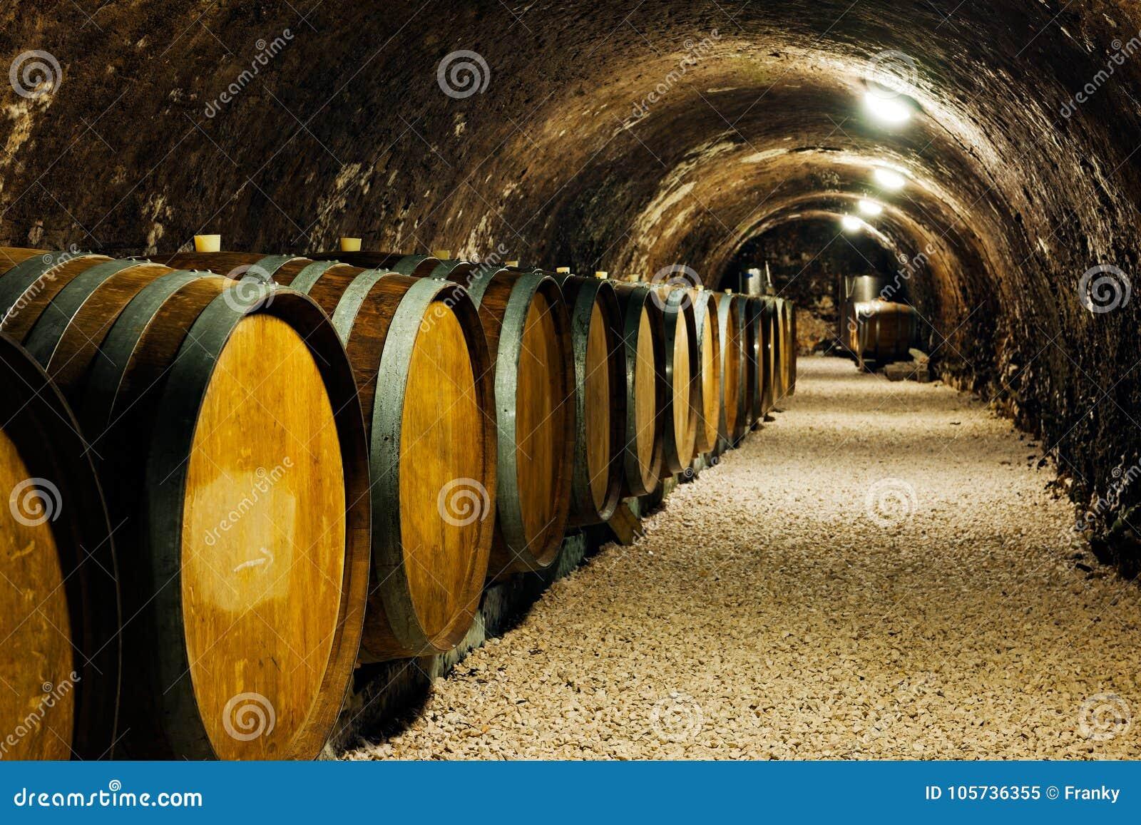 Vieux barils de vin dans une cave