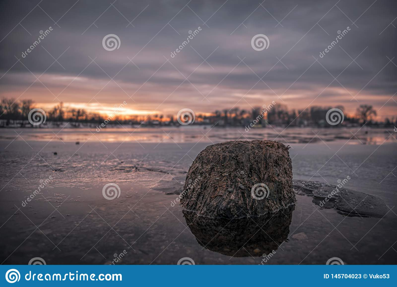 Vieux bois dans l eau congelée