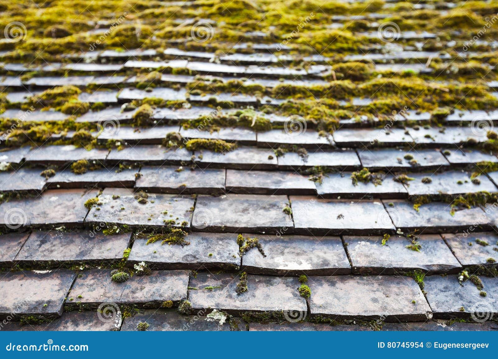 vieux carrelage en pierre de toit avec de la mousse verte photo stock image 80745954. Black Bedroom Furniture Sets. Home Design Ideas
