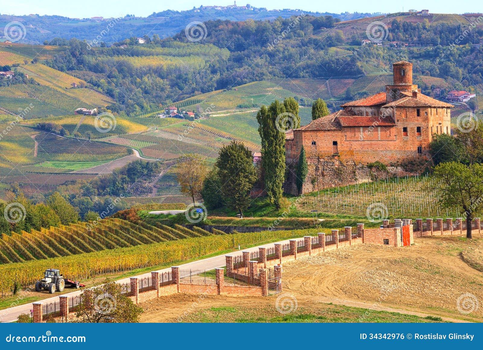 Vieux ch teau et vignobles dans pi mont italie image for Dans italien