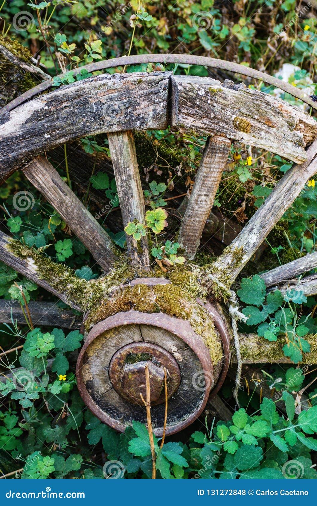 Vieux chariot abandonné