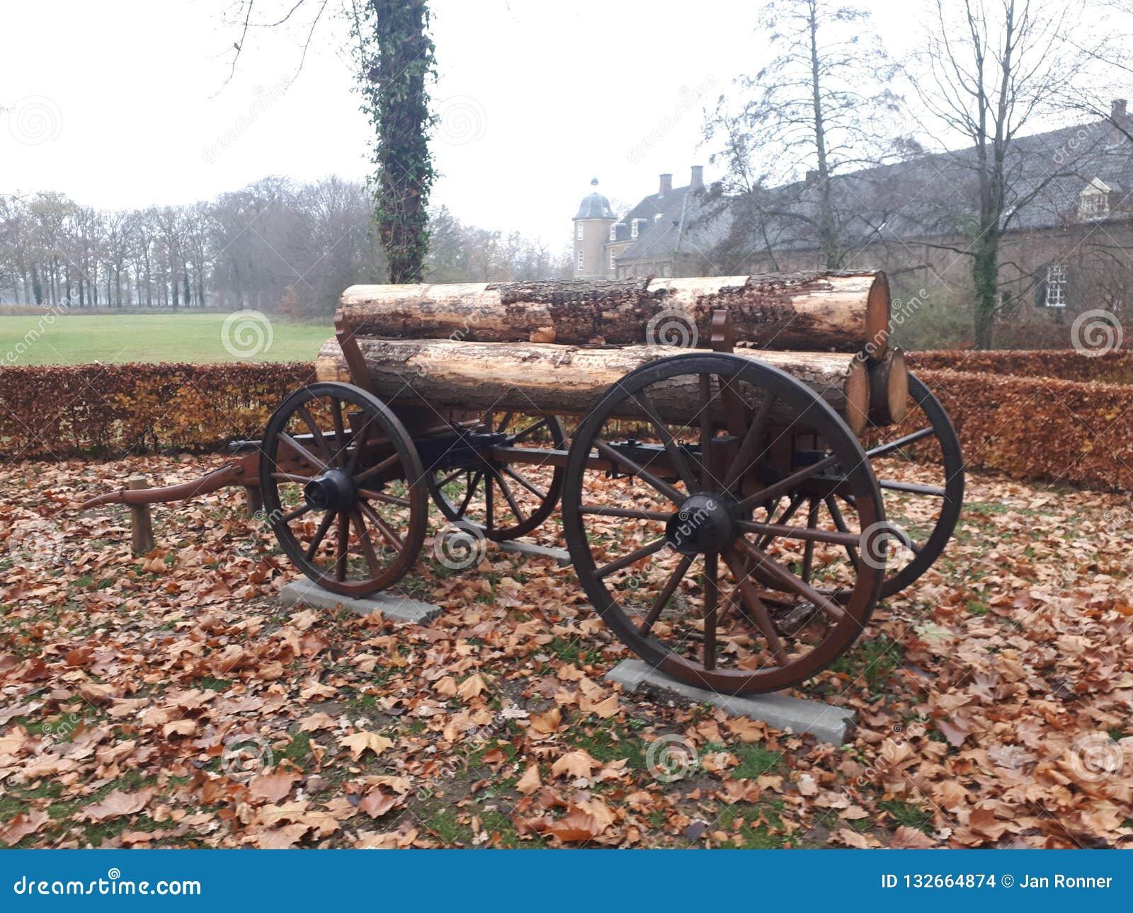 Vieux chariot avec des logarithmes naturels