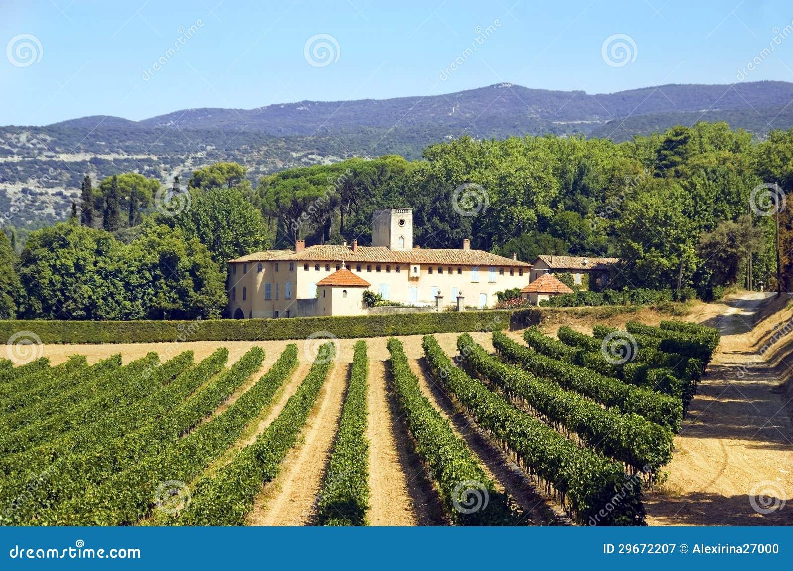Vieux maison et vignoble dans la région de Luberon, France
