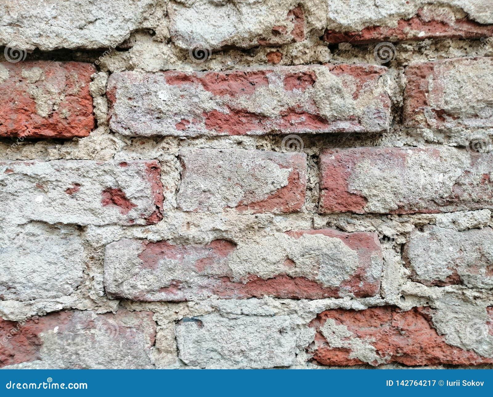 Vieux murs de briques
