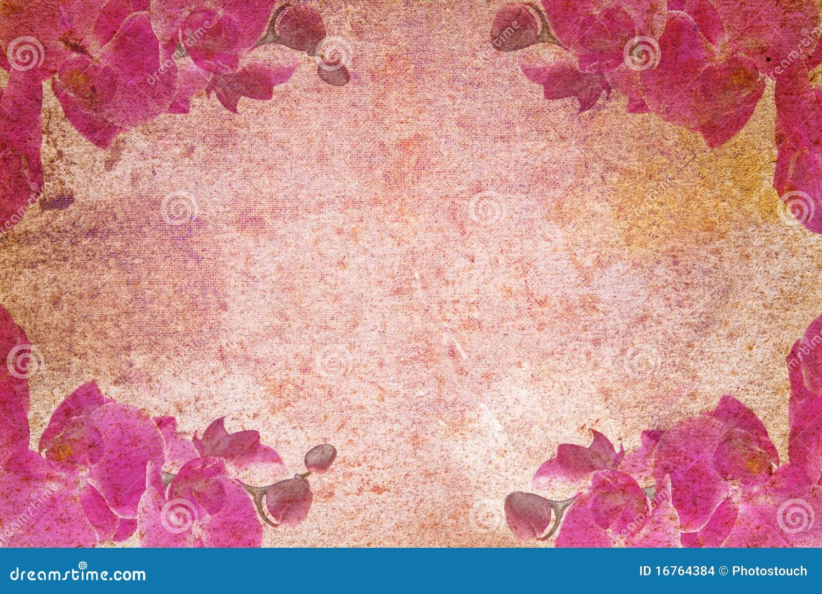 Vieux papier d abrégé sur cru avec des motifs d orchidée