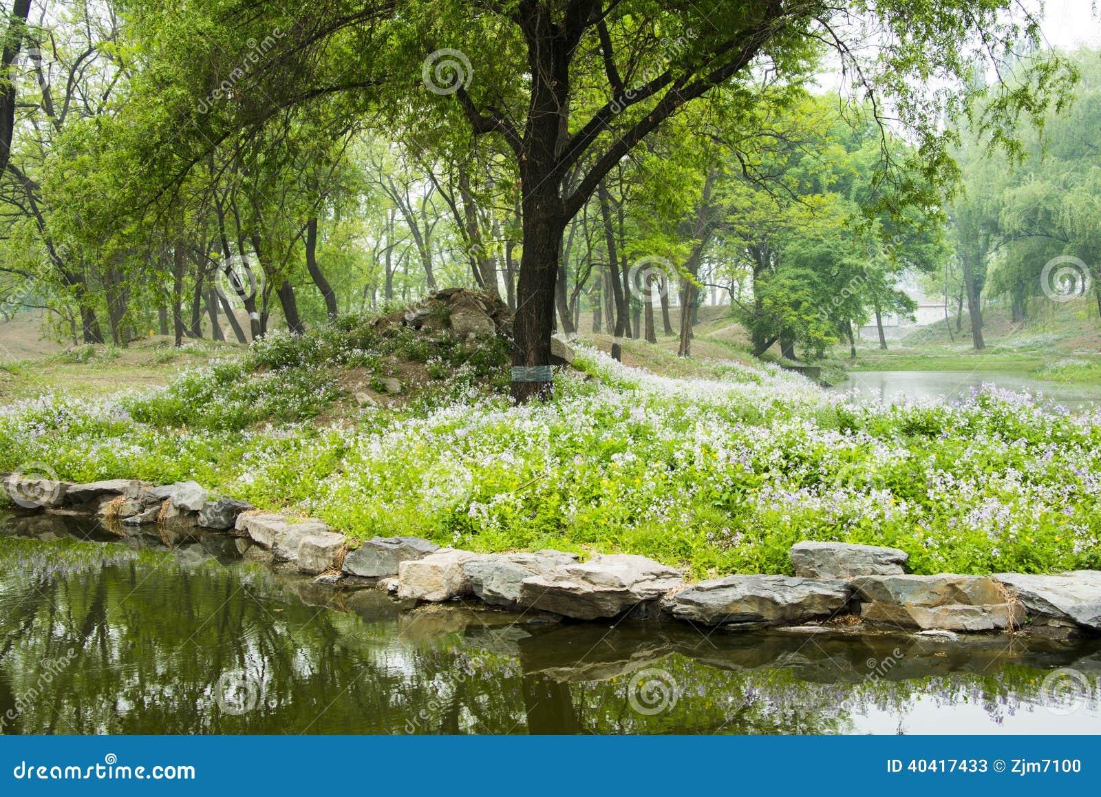 vieux paysage naturel chinois asiatique de palais d 39 t image stock image du beau beijing. Black Bedroom Furniture Sets. Home Design Ideas