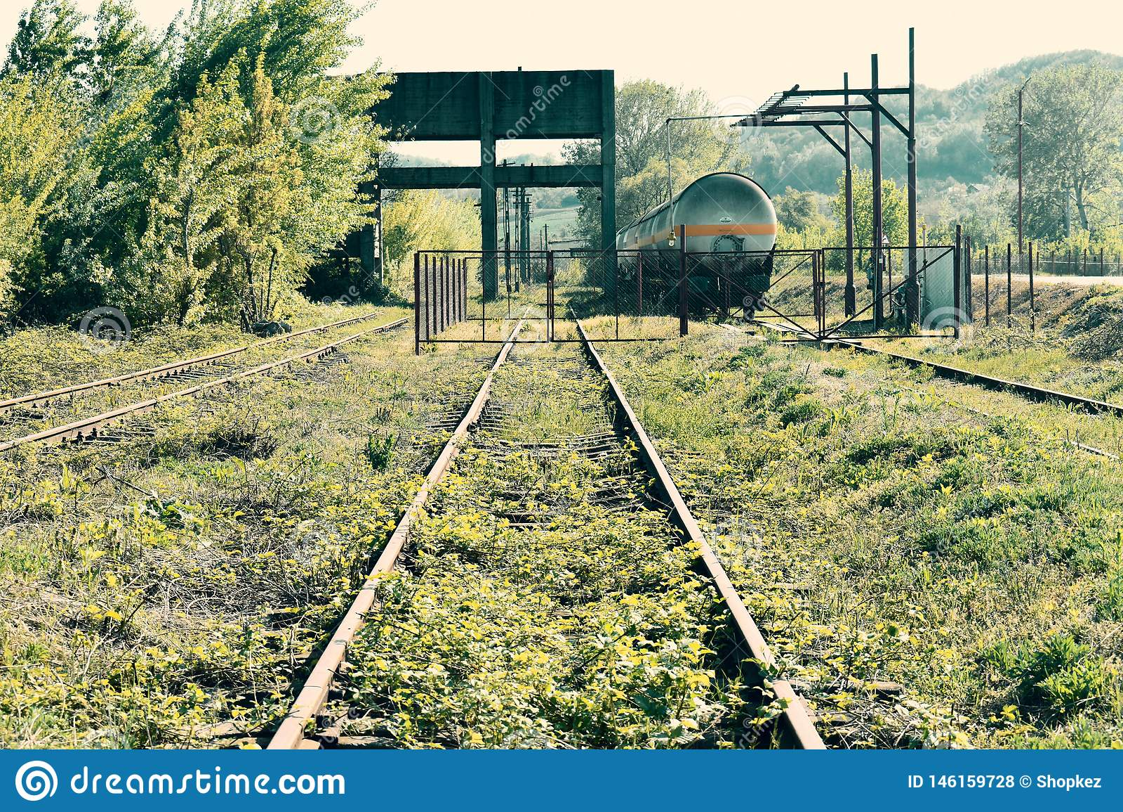 Vieux rails rouill?s abandonn?s avec des mauvaises herbes et des usines par elles