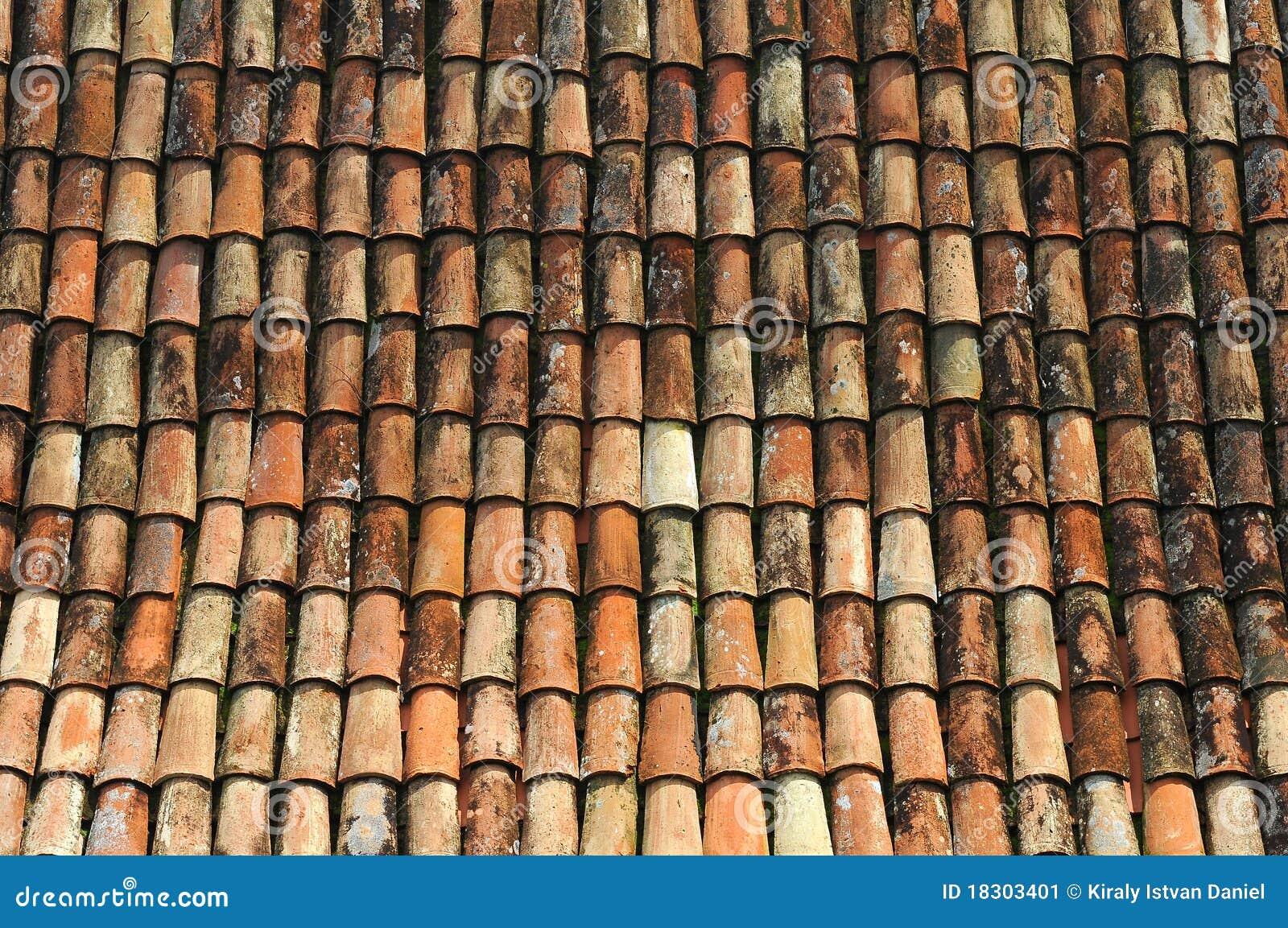 vieux toit de tuile image stock image 18303401. Black Bedroom Furniture Sets. Home Design Ideas