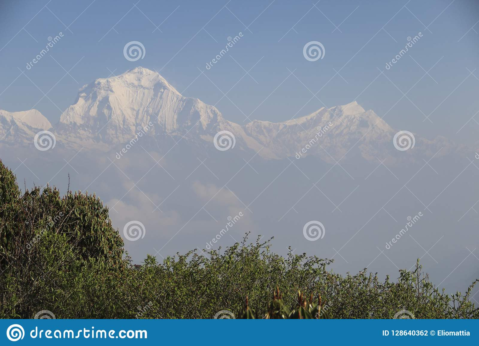 View of the Annapurna range from Poon Hill at sunrise, Ghorepani/Ghandruk, Nepal