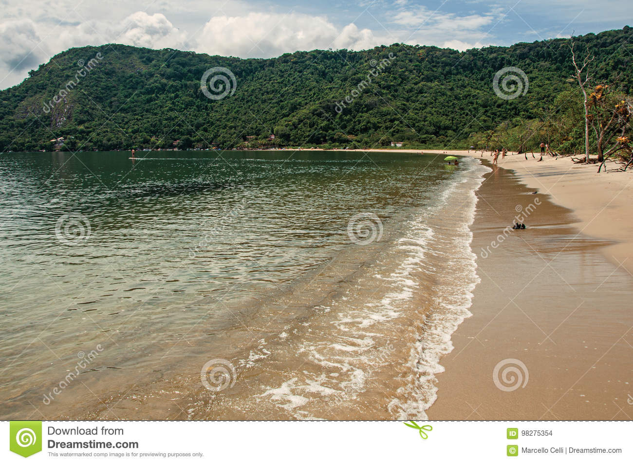 View of beach, sea and forest on cloudy day in Paraty Mirim.