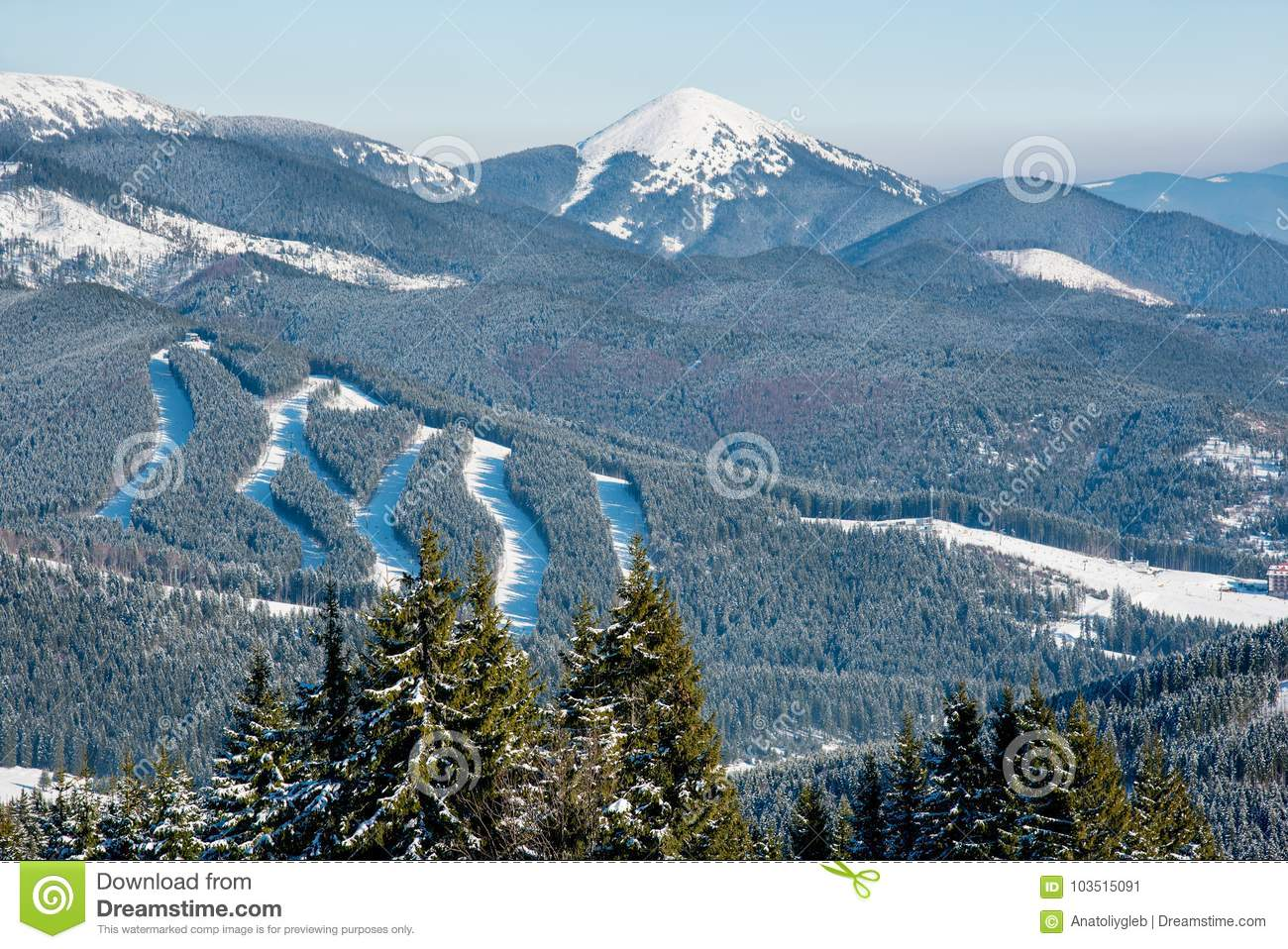 View Of Beautiful Snowy Mountains Forests Ski Slopes At Resort On A Sunny Winter Day Bukovel Landscape Layout Scenery Wallpaper Background Nature