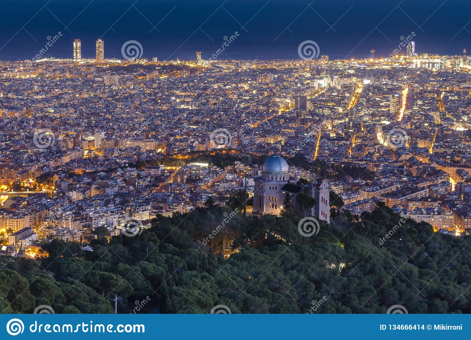 View of the city at night, Barcelona, Spain