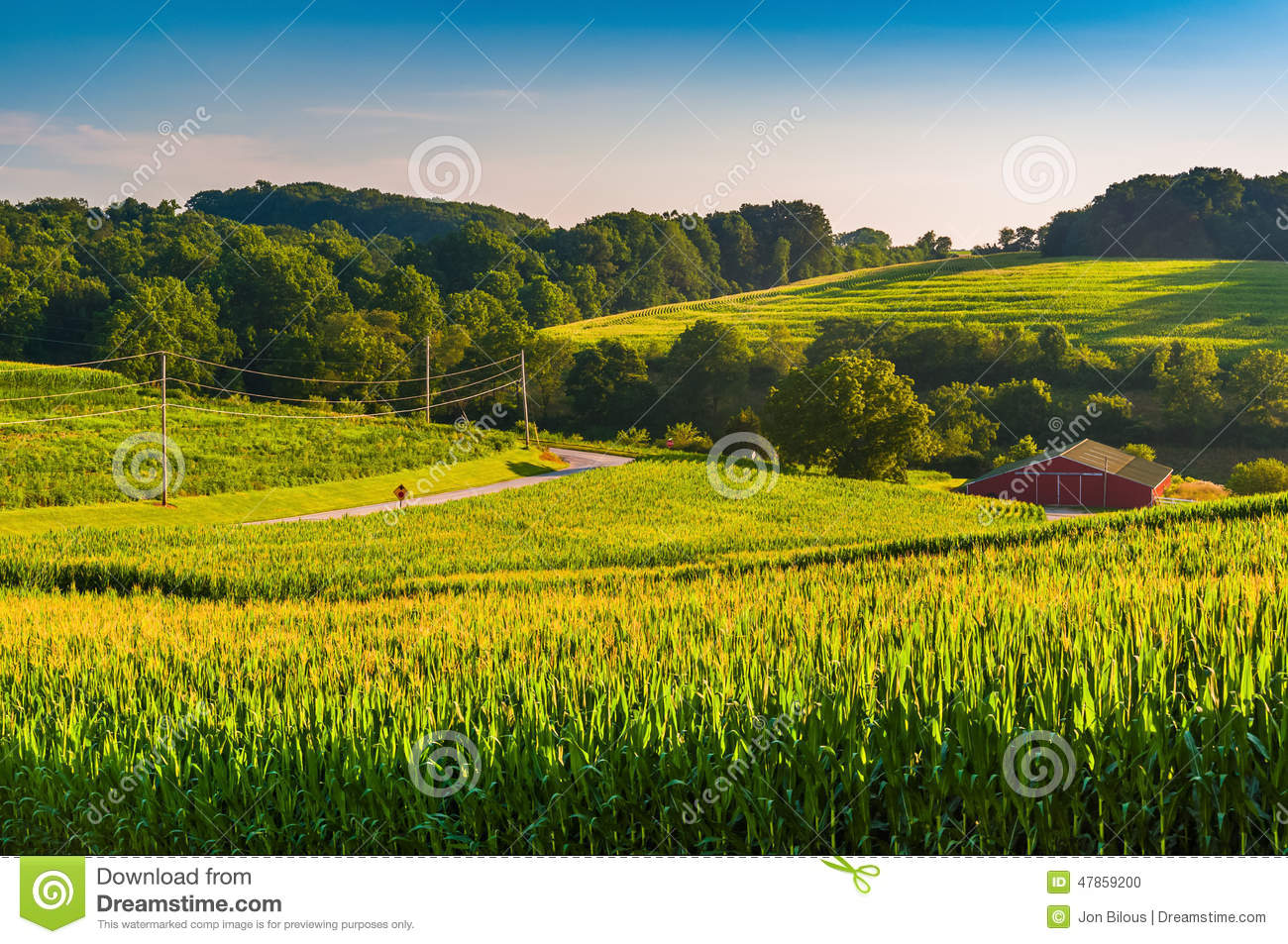 View of cornfields and a barn in rural York County, Pennsylvania