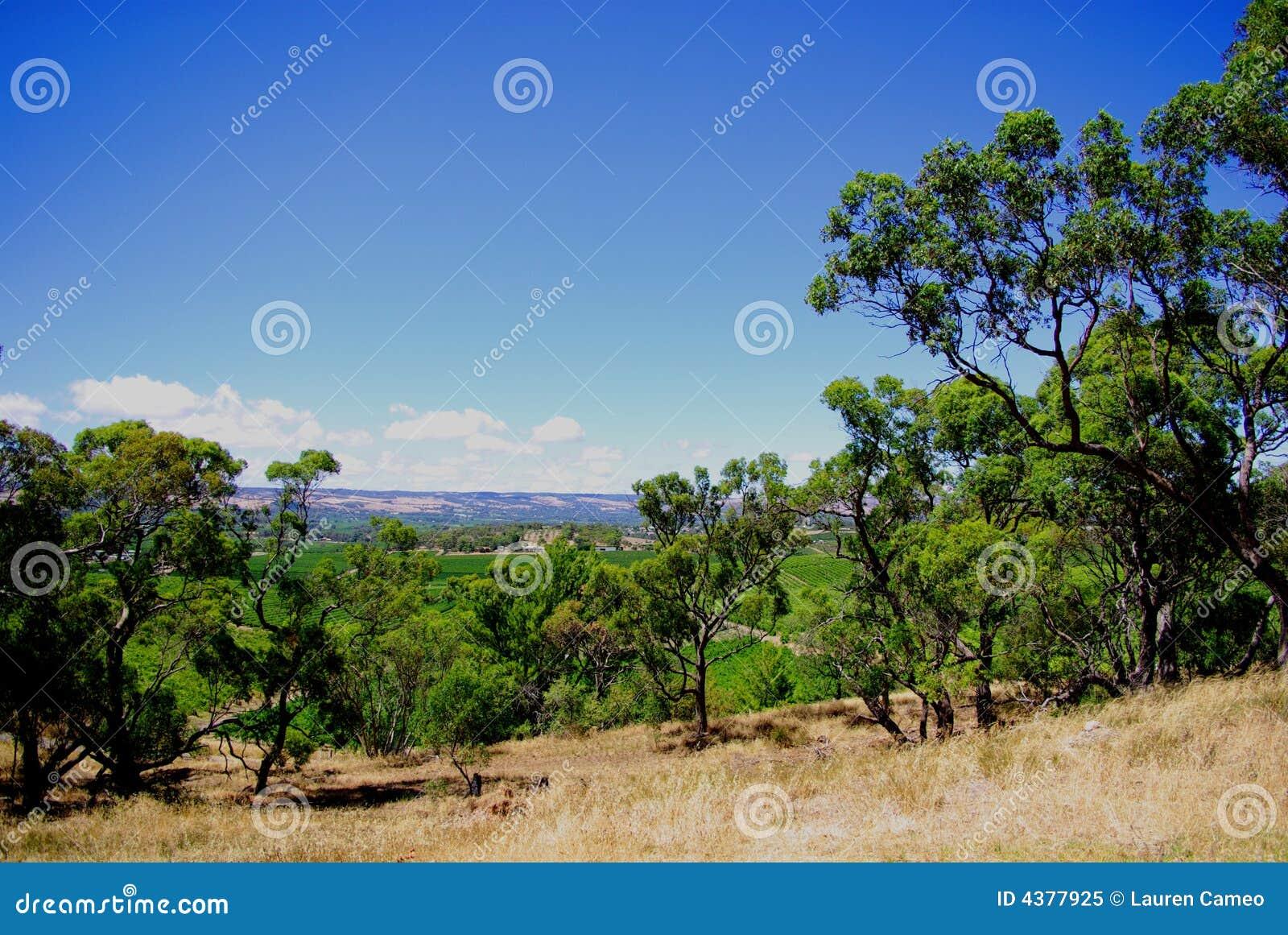 Mclaren Vale Winery Map Mclaren Vale Australia Map Related