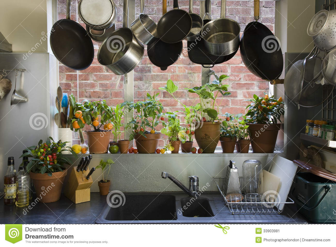 Kitchen window for plants - Royalty Free Stock Photo